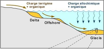 Comment fonctionne le carbone datant fossiles datant du CNRC