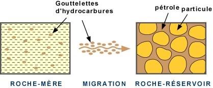 Migration_gouttelettes