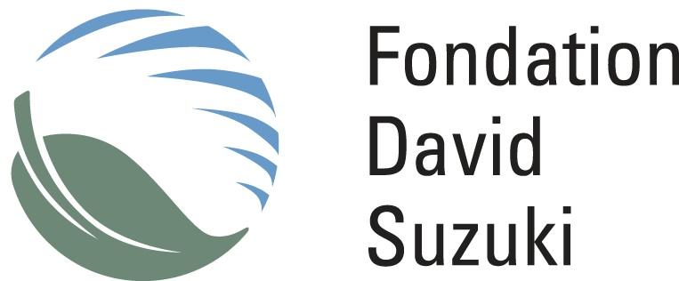 FDSuzuki
